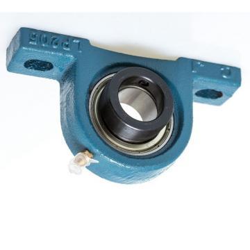 Deep Groove Ball Bearing NSK 6006zz, 6006 2RS, 6007zz, 6007 2RS for Fan, Motor Bearing, Gearbox Bearing