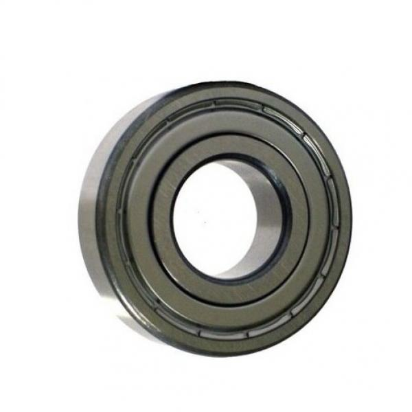 NTN SKF Koyo Snr NSK Insert Ball Bearing with Plastic Pillow Blocks for Chemical/Food Industries #1 image